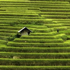 Vietnam mosaic of contrasts by photographer rehahn 3__880.jpg