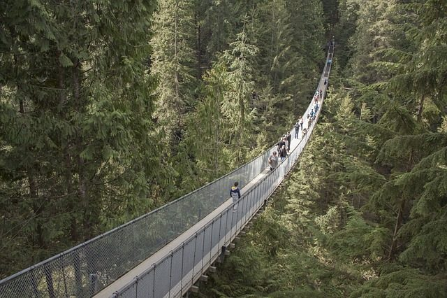 Capilano suspension bridge_pixabay.com_.jpg