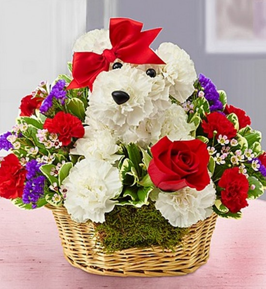 Puppy bouquet 550x597.jpg