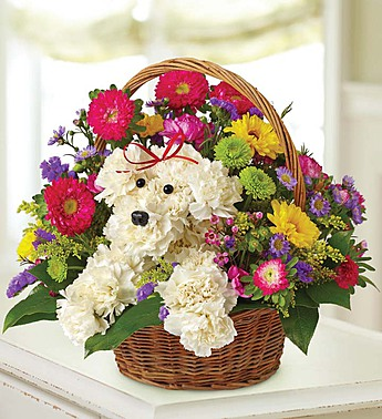 Puppy bouquet2.jpg