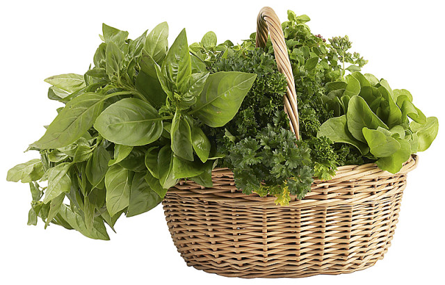 Basket_of_herbs.jpg