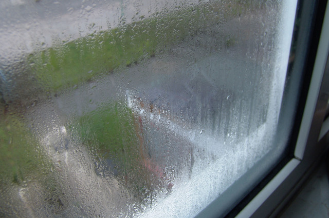 Misted sealed window unit.jpg