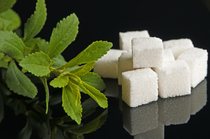Stevia rebaudiana, support for sugar