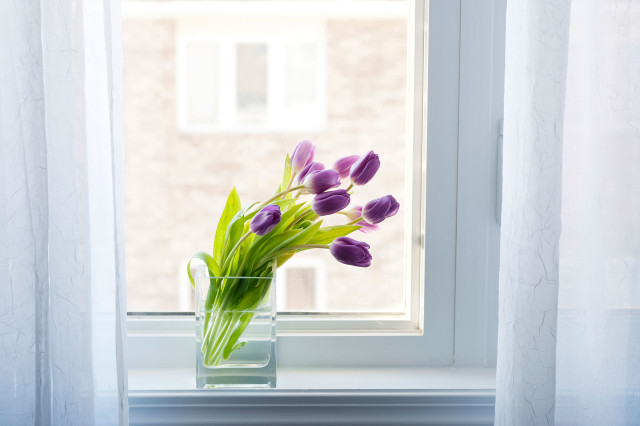 03 13 things florist flowers in window.jpg