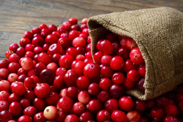 The health benefits of cranberries by greenblender bag.jpg