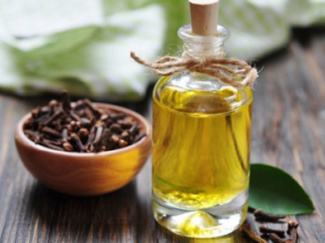 Clove oil for liver cleansing.jpg