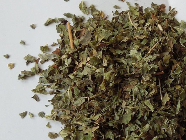 Dried lemon balm leaf.jpg