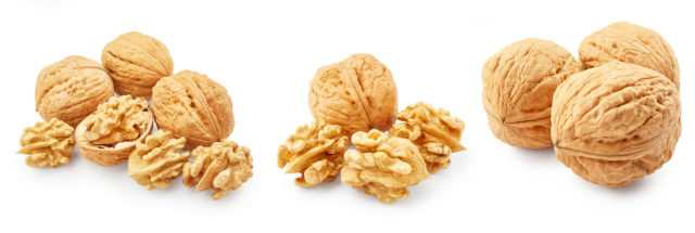 Set of walnuts