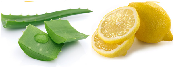 Lemon alovera.jpg