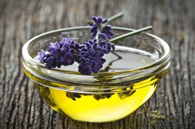 Olympic lavender oil.jpg