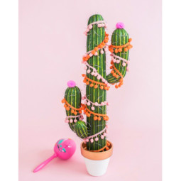 Preview_holiday cactus.jpg