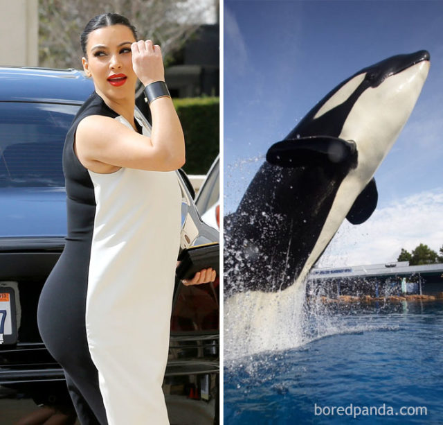 Who wore it better 4 58949d2403eb5__700.jpg