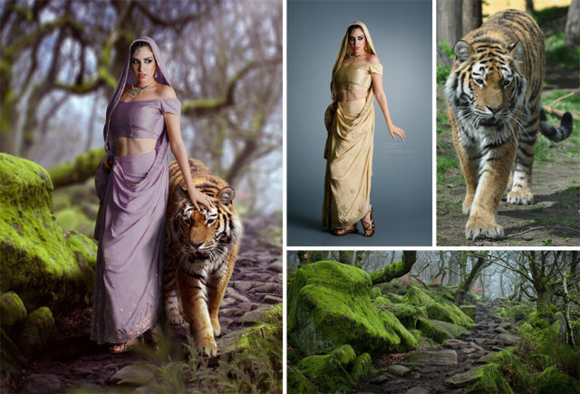 Amazing what this artist does with photoshop 58b6d65aad96d__880.jpg