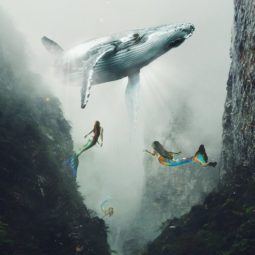 Surreal digital art huseyin sahin 60 58d37d22d1cae__880.jpg