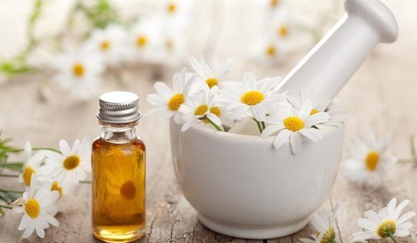 Chamomile essential oil 600x350.jpg