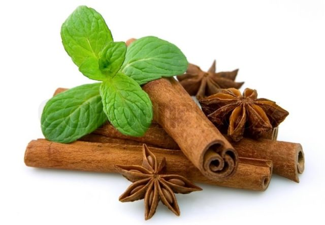2789671 sticks of cinnamon with mint and aniseon a white background.jpg