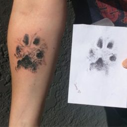 The paws of the dogs are being tattooed on their owners and the result is adorable 59b337800c859__700.jpg