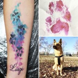 The paws of the dogs are being tattooed on their owners and the result is adorable 59b65895f1300__700.jpg
