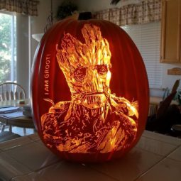 Artist uses pop culture as a theme to sculpt his pumpkins 59e08305d25fd__700.jpg