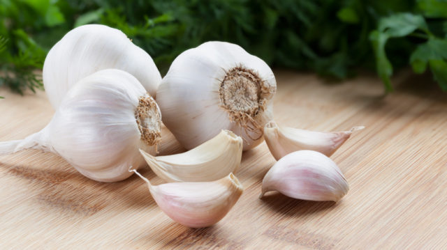 Garlic bulbs850.jpg