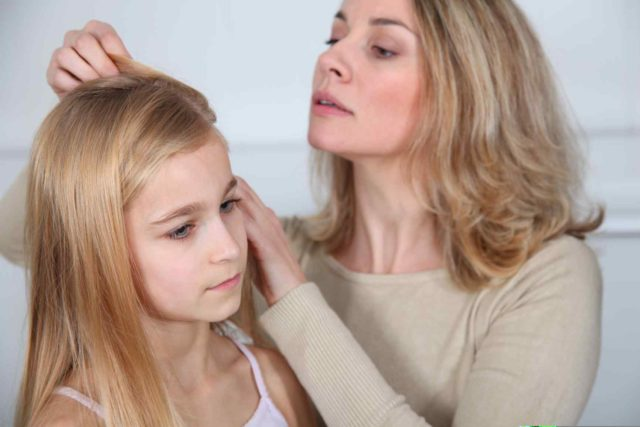Head lice home page.jpg