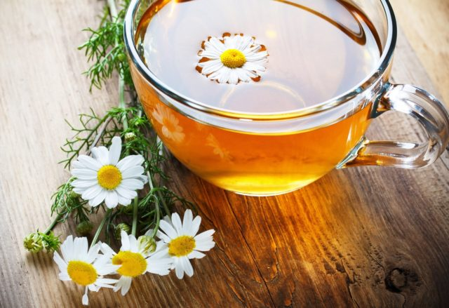 Mood cup mug tea daisy flower flowers tea background wallpaper widescreen full screen widescreen hd wallpapers background wallpaper.jpg