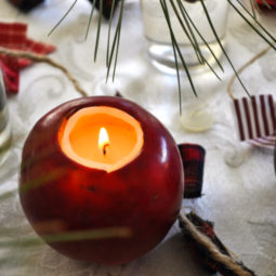 06. apple candle.jpg
