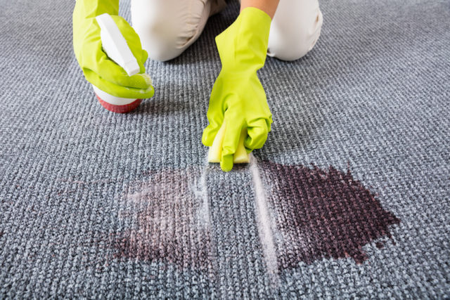 Woman Wiping Stains On The Carpet With Spray Bottle