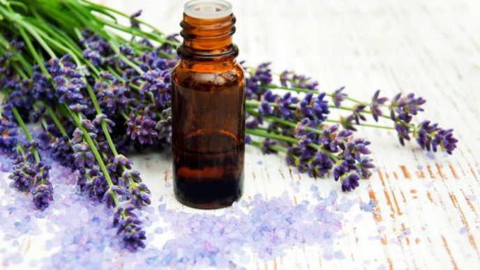 09 these essential oils will make your cold and flu symptoms vanish 1024x683.jpg