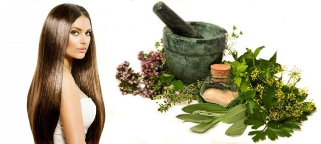Herbal treatment for healthy hair.jpg
