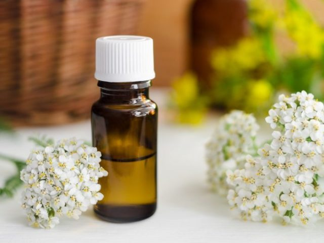 Yarrow essential oil.jpg