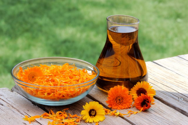 Calendula your_skincare_routine.jpg