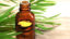 6140 tea_tree_oil_for_warts 732x549 thumbnail.jpg