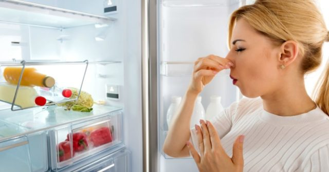 Remove bad odors from fridge get rid of fridge smells 1024x536.jpg