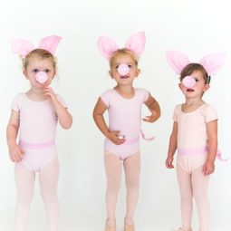 Diy three little pig sister halloween costumes 1529076286.jpg