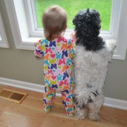 Funny kids with animals 41.jpg