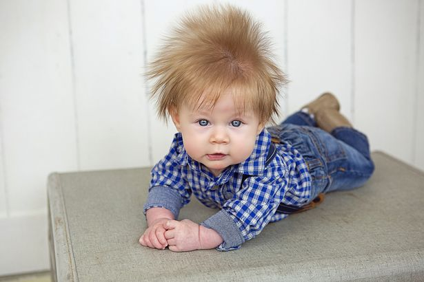 Pay hairy baby with five inch quiff 2.jpg
