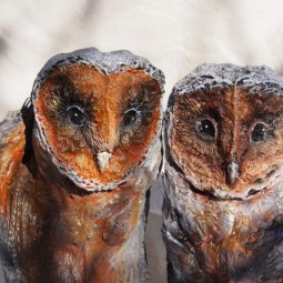 I make owls from wood and clay 5c5418ff1e812__880.jpg