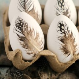 Feather easter eggs.jpg