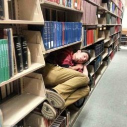 Nextlevelnapping libraryistheonlyquietplace.jpg