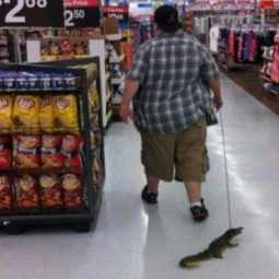 45 epic photos that could happen only at walmart trending dirt 22.jpg