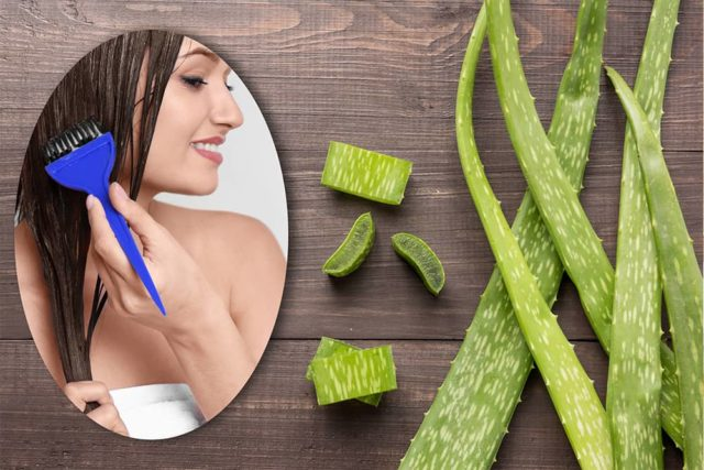 Diy aloe vera hair masks intro.jpg