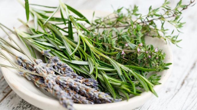 How to safely use lavender for babies kids.jpg