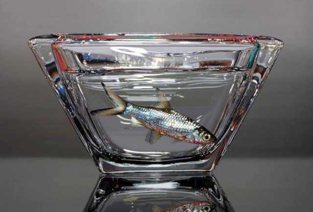 Fish in bowl young sung kim hyperrealism.png