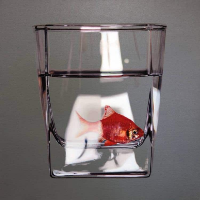Fish realistic in glass young sung kim hyperrealism.png