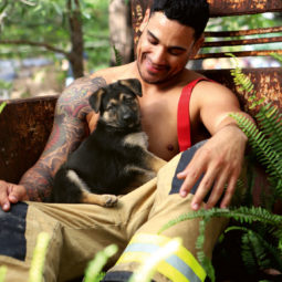 Australian firefighters animals calendar 2020 28 5d9c4352b1448__700.jpg