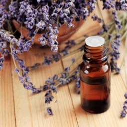 Healing lavender essential oil for beauty treatment and home deodorant