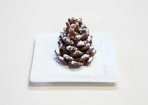 12-chocolate-pinecone-recipe-2