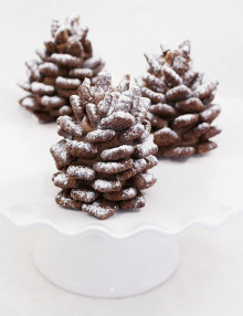 13 chocolate pinecone recipe 2