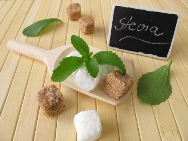 Stevia leaves and sugar cubes.jpg
